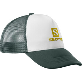 Salomon Summer Logo Cap Herren white/green gables